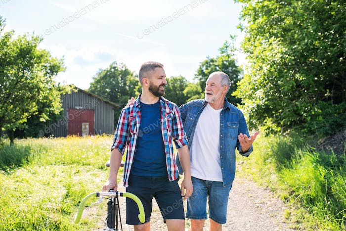 An adult hipster son with bicycle and senior father walking in sunny nature.