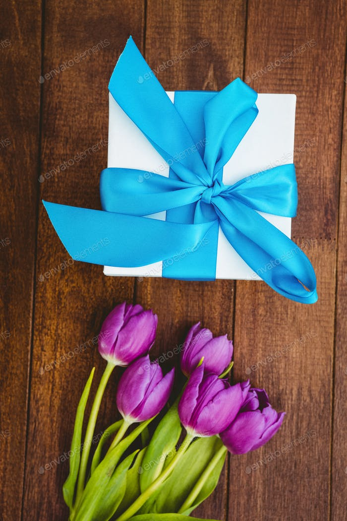 Close up view of purple flowers and blue gifts
