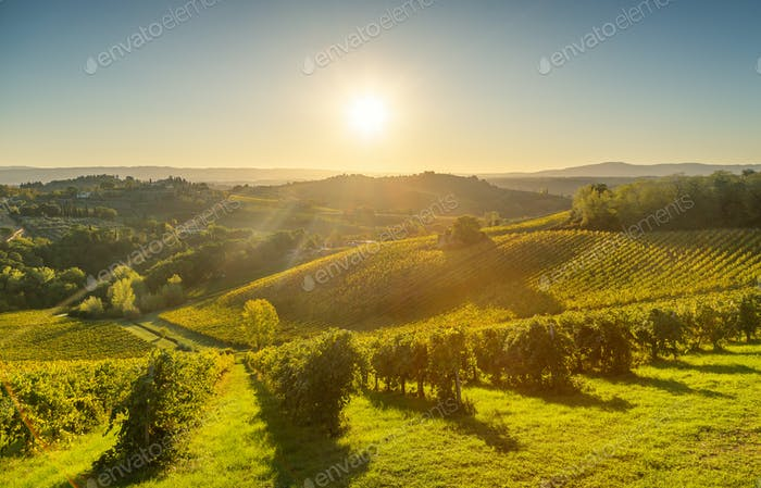 Panoramic view of countryside and chianti vineyards from San Gim