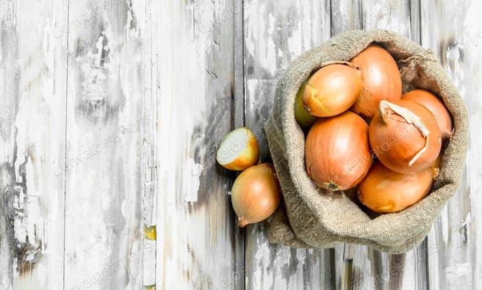 Yellow fresh onion in sack.