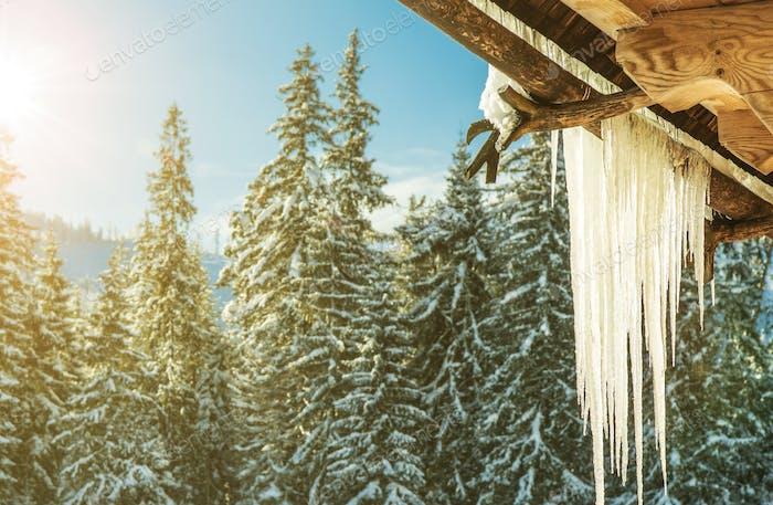 Frostende Winterzeit