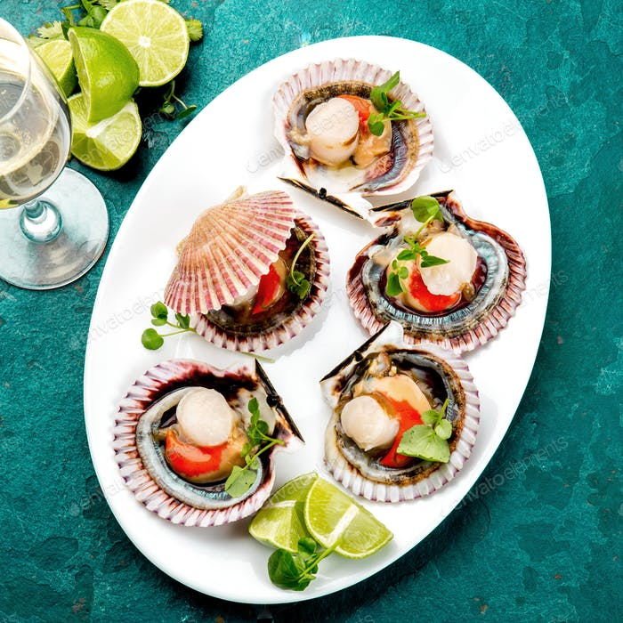 Raw opened shellfish scallops on white plate served with lemon and white wine