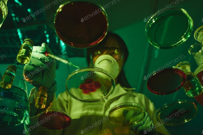 Cultivating bacteria