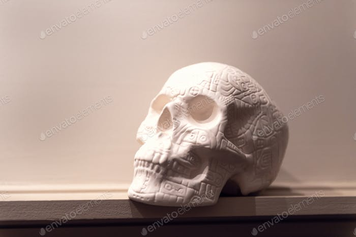 White Decorative Skull on shelf