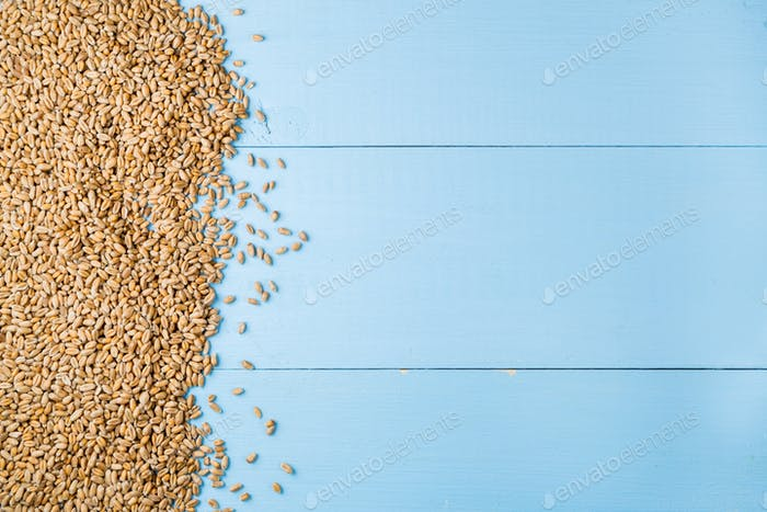 Seeds of wheat ears on blue wooden background