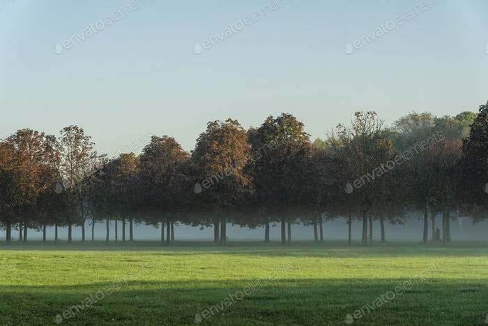 Parco Nord of Milan in a October morning
