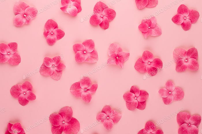 Frühlings-Blumen-Grußkarten-Vorlage.