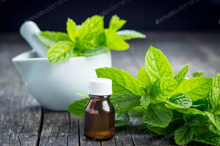 Bottle of essential mint oil.