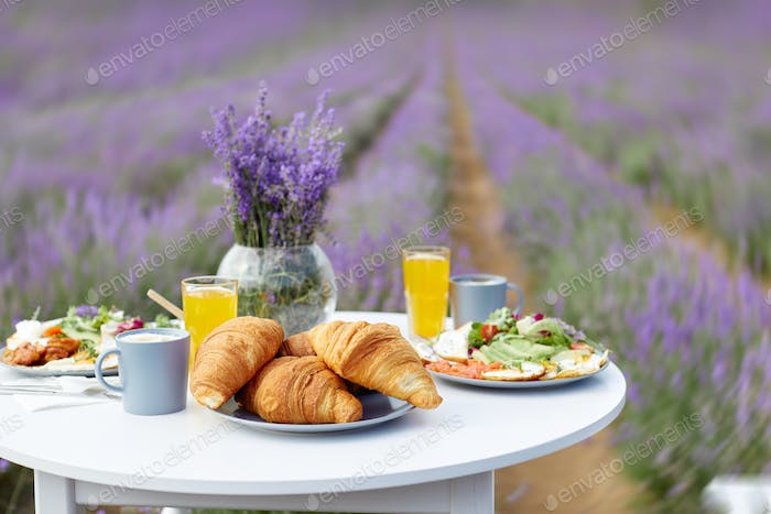 Decorated table with food in lavender field