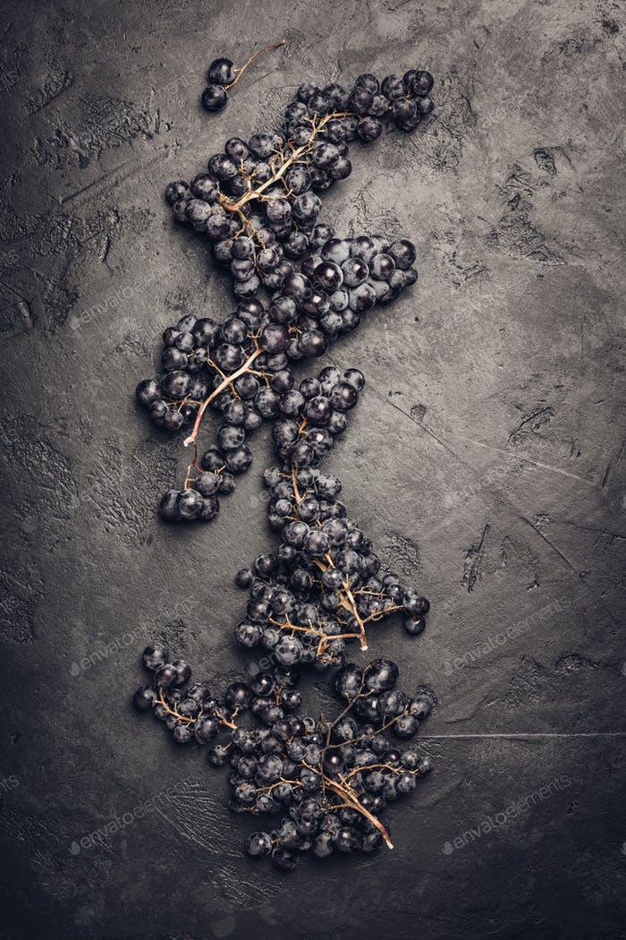 Fresh grape on dark background