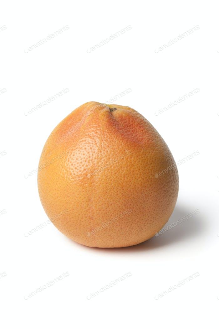 Whole single grapefruit