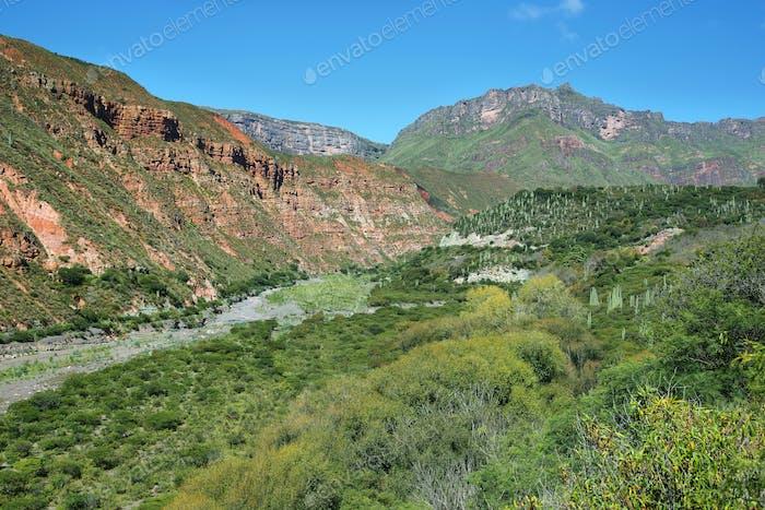 Escoipe Gorge (Quebrada de Escoipe)