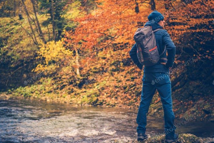 Herbstzeit Waldwanderung