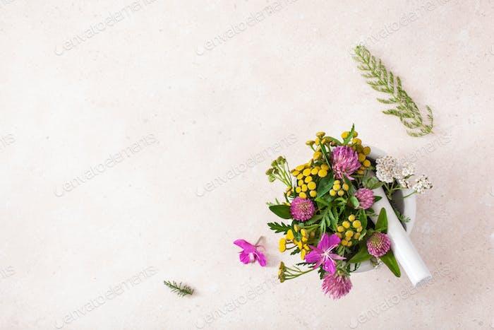 medical flowers herbs in mortar. clover milfoil tansy rosebay