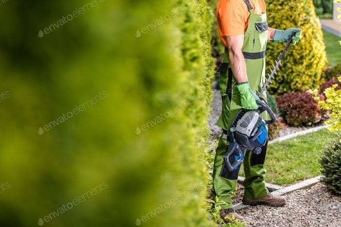 Seasonal Garden Trimming