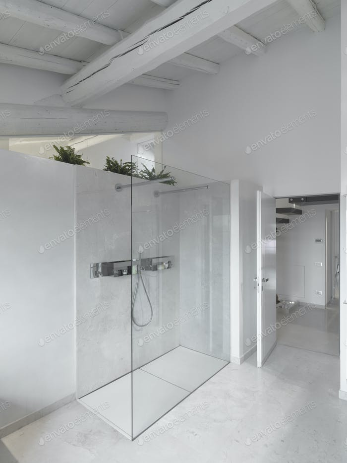 Interiors of the Modern Bathroom in the Attic Room in the  Attic Room