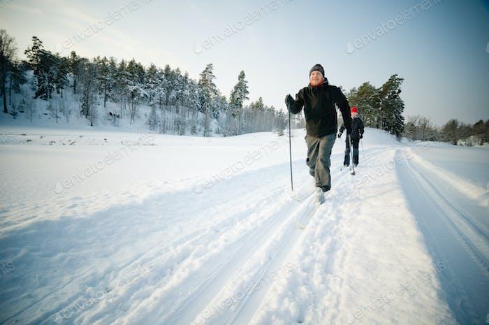 Пара лыжи