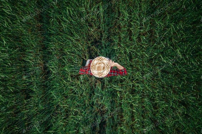 Luftaufnahme des Gerstenbauers, der auf dem Feld steht