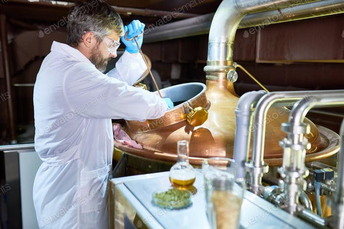 Process of Beer Fermentation