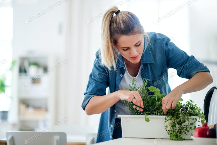 Young woman indoors at home, cutting herbs.