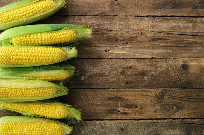 Fresh corn on cobs on vintage rustic wooden background, closeup, top view, copy space