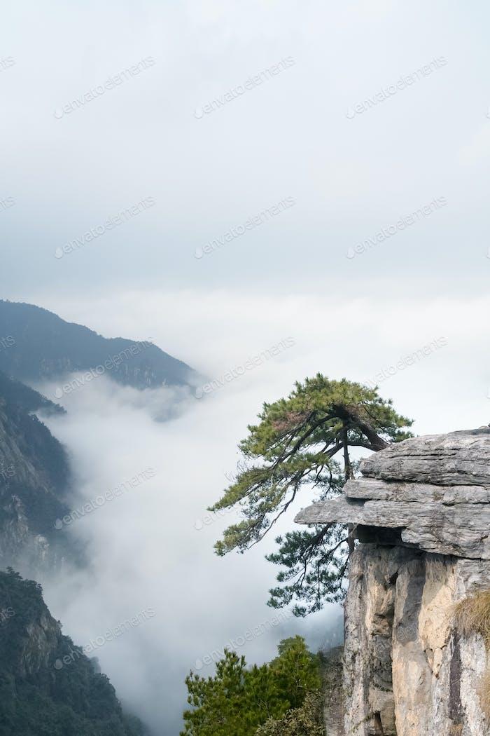 lushan mountain landscape