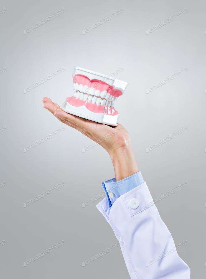 Zahnarzthalten mit Prothese