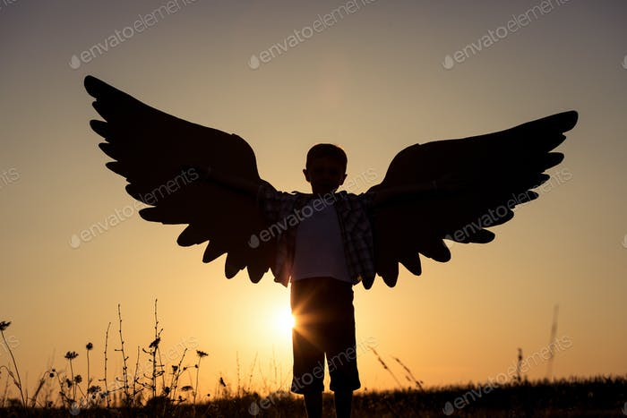 Little boy playing with cardboard toy wings in the park at the s