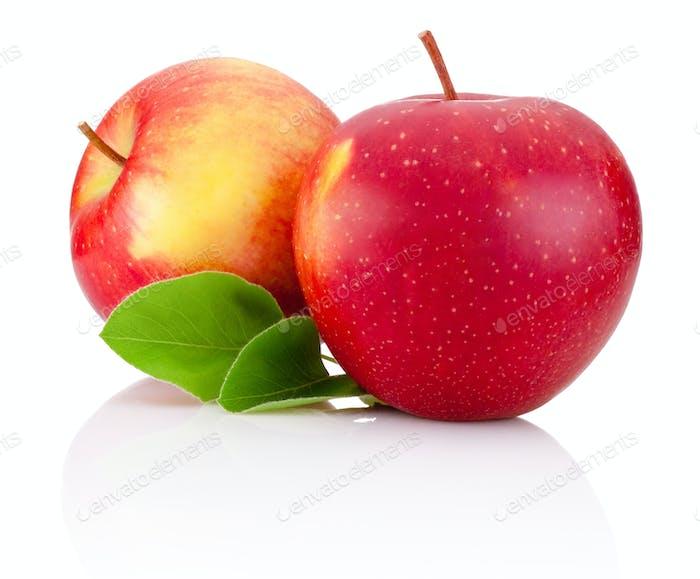 Zwei rote Äpfel Früchte und grüne Blätter auf weißem Hintergrund