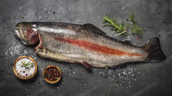 Raw salmon fish whole with ingredients for cookings on black