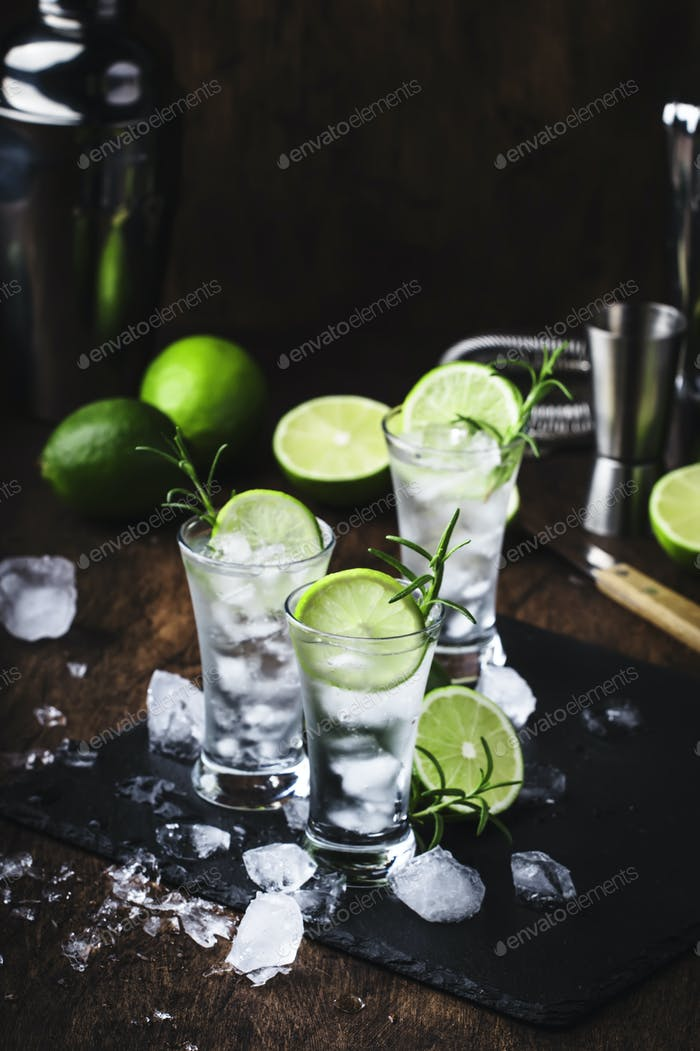 Classic gin tonic cocktail