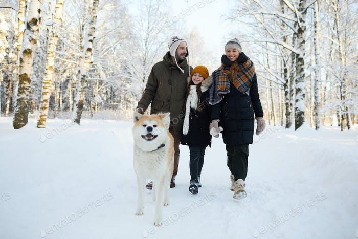 Familienwanderhund im Winter