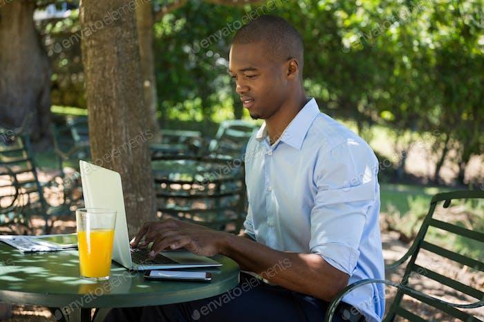 Young man using laptop at restaurant