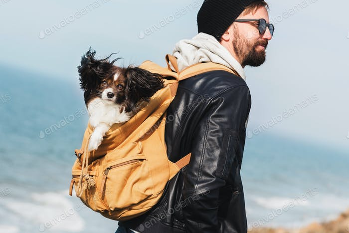 Travel hipster man with dog  fluffy  breed papillon in backpack.