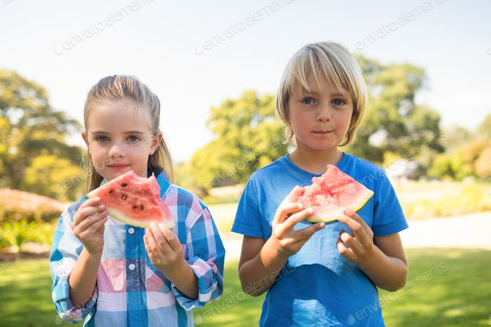 Siblings having watermelon in the park