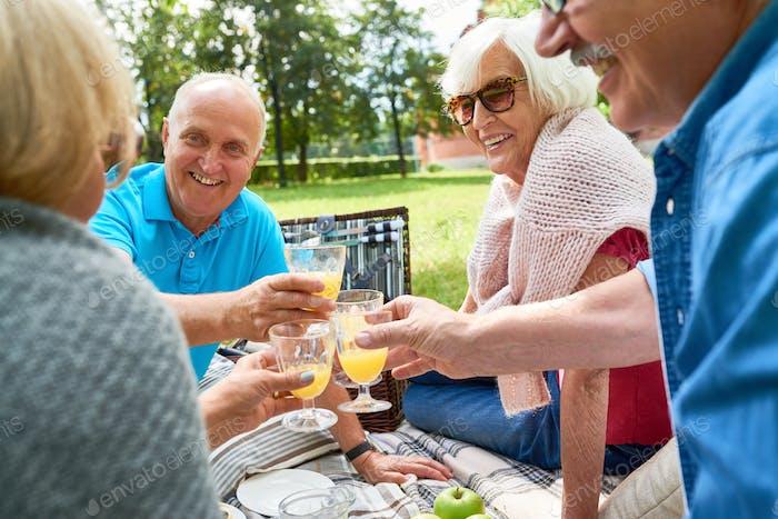 Group of Senior People Enjoying Picnic in Park