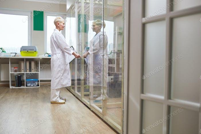 Médico veterinario en la clínica veterinaria