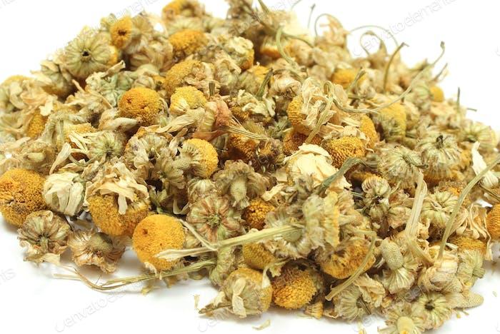 Heap of dried chamomile using in alternative medicine