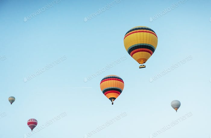 A group of colorful hot air balloons against