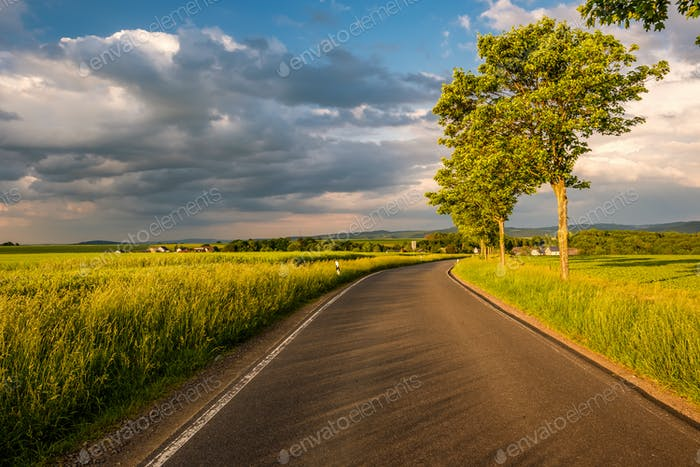 Rural road between fields in warm sunshine under dramatic sky