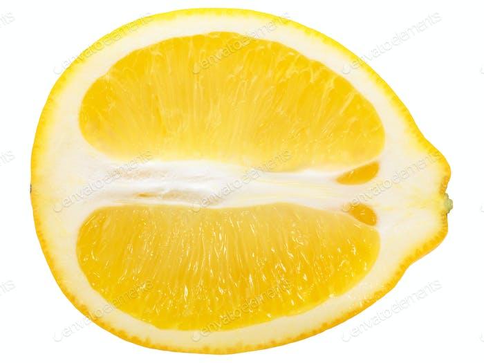 Lemon half slice, paths