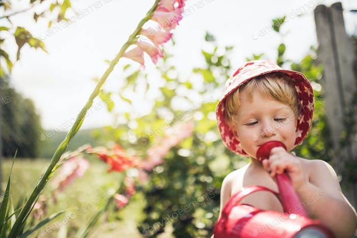 Small boy with a hat standing outdoors in garden in summer. Copy space.
