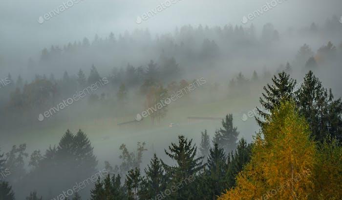 Misty sunrise in slovenian countryside