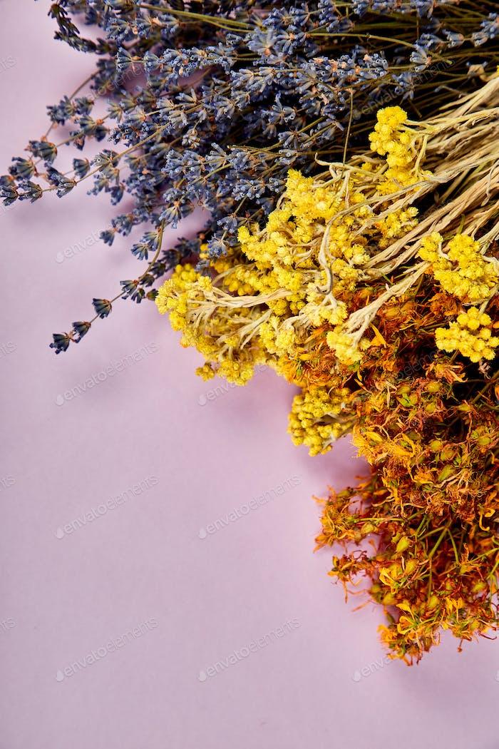 Frame from dry herbs flower