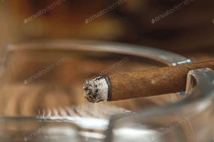 Lighted cigar in an ashtray close up