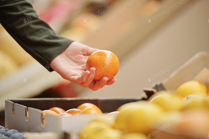 Selección de mandarina en el mercado