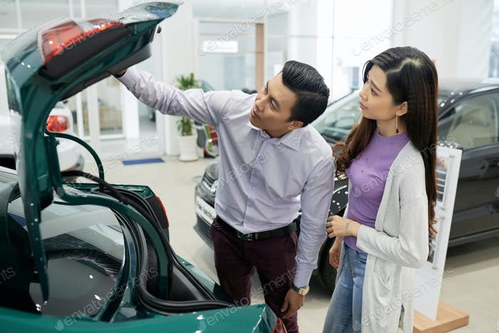 Checking car trunk