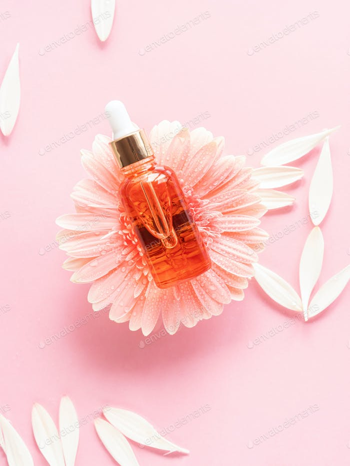 Cosmetic beauty serum oil acid bottle product on pink background with pink daisy
