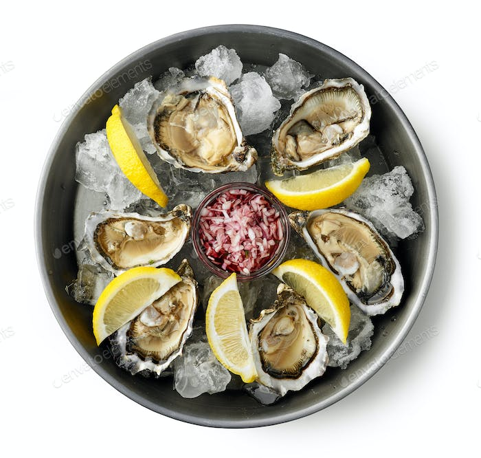 plate of fresh oysters on white background