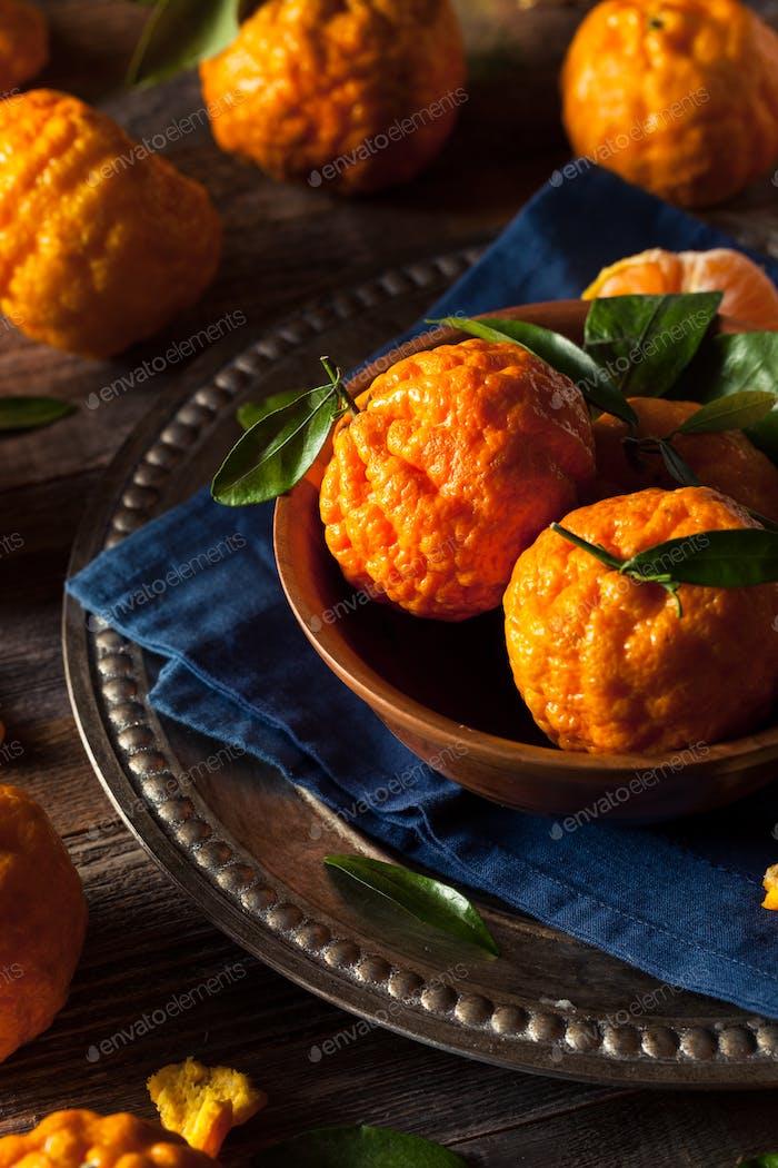 Raw Organic Gold Nugget Mandarine Orangen